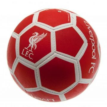 Liverpool FC All Surface Football
